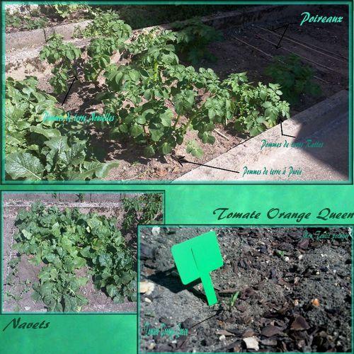 jardin mars 2011