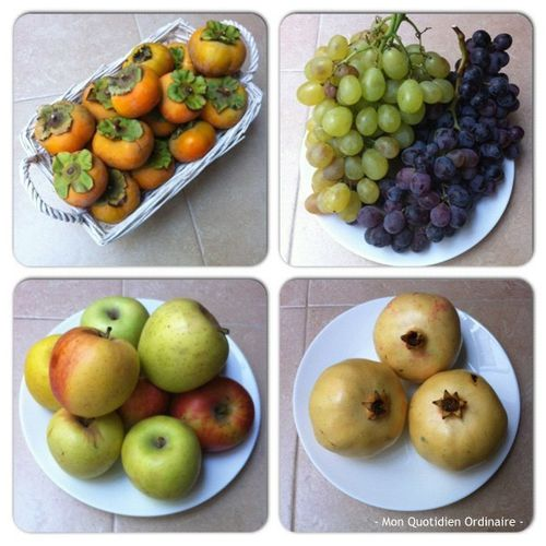 Fruits-d-Automne.jpg
