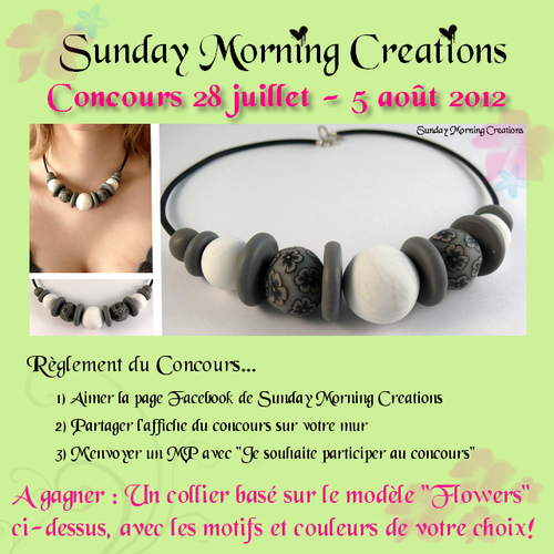 afficheconcours.png