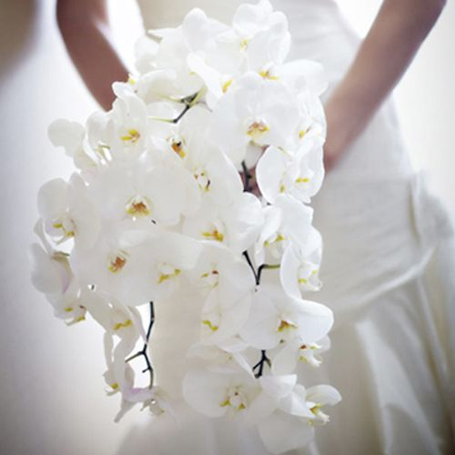 phalaenopsis-wedding-bouquet-aileen-tran1