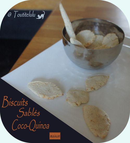 sable-a-la-coco-sans-gluten-sans-lactose-sans-oeuf--2-.JPG
