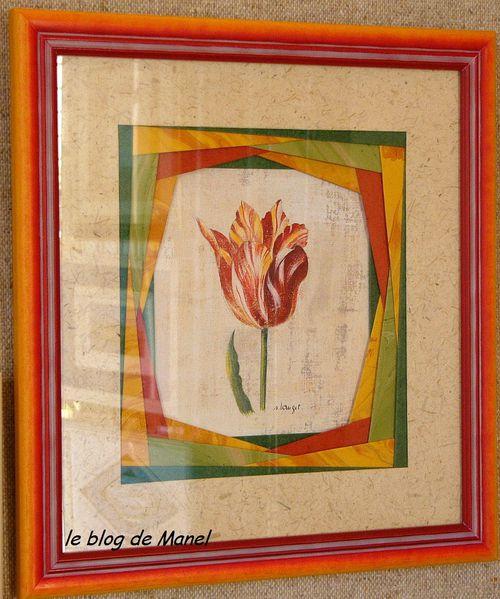 tulipe_NEW.jpg