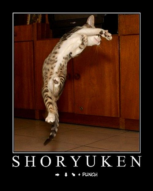 L'inscription de Shoryuken... Shoryuken