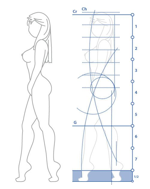 proportions-corps-femme
