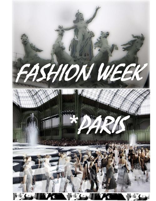Fashion Ballyhoo - fashion week Summer spring 2011 Paris 1