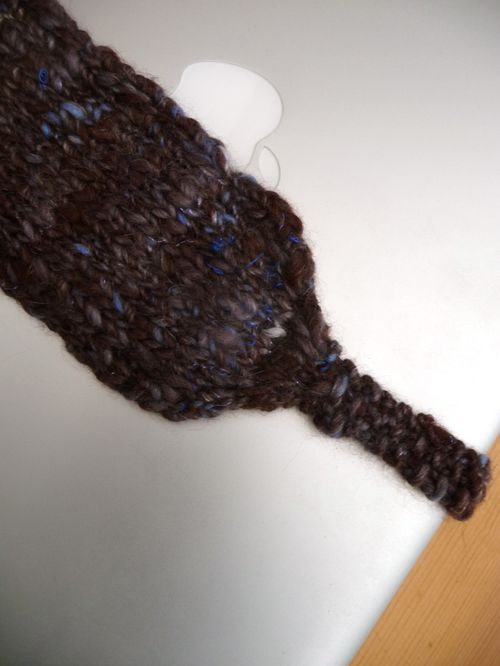 P1020231headband_brownieblue.jpg