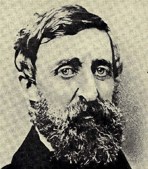 Henri David Thoreau-copie-1