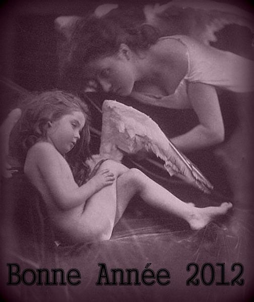 Bonne-Annee-2012--.jpg