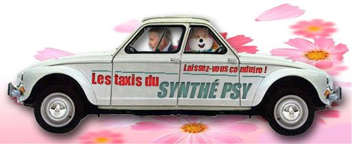Montage-double-Dyane-synthepsy.jpg