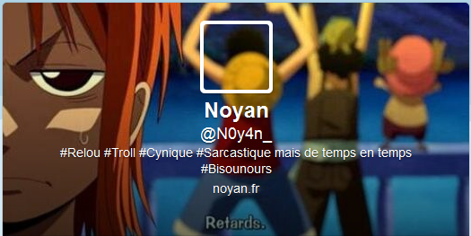 One-Piece-twitter-fusion-picture-profil-couverture-cover-noyan.png
