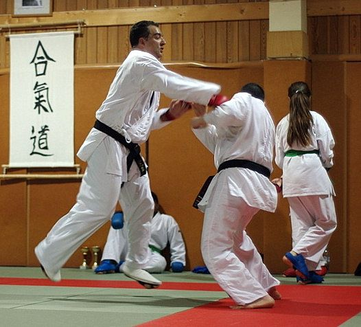 Yves Mailliere Karate 2