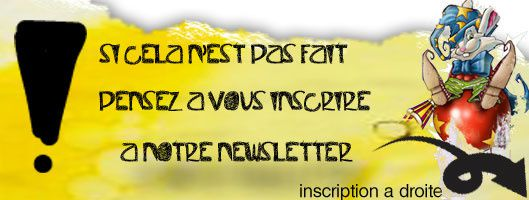 inscrition-newsletter2-copie-1