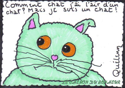 dessin-d-un-chat-chat.jpg
