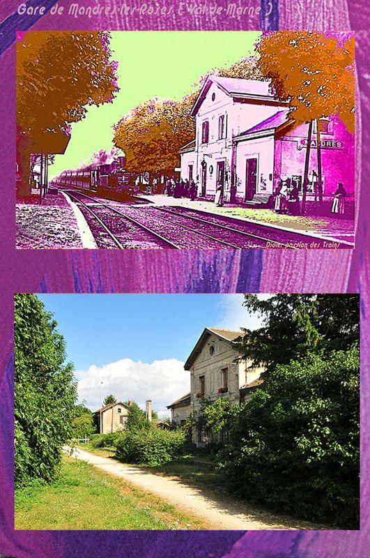 MANDRES-LES-ROSES ( Val de Marne ) La gare ( Didier Simonne