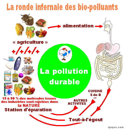 cycle-biopolluants-pollution-durable