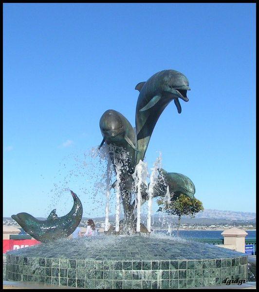 les-dauphins-2.jpg