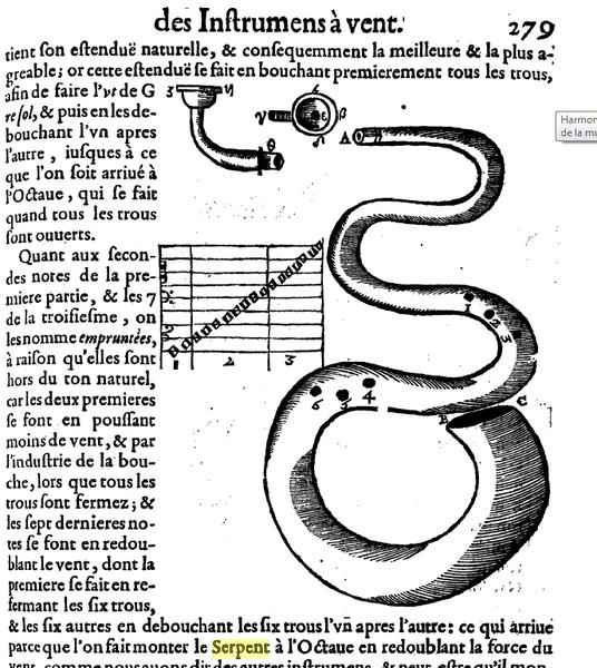 serpent-marin-mersenne.png