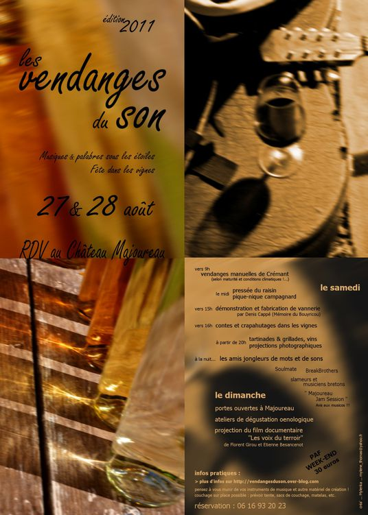 vds2011 flyer web5