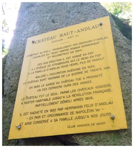 21.10.2012-BALADE-AUTOMNALE-ANDLAU-LES-CHATEAUX-097.JPG