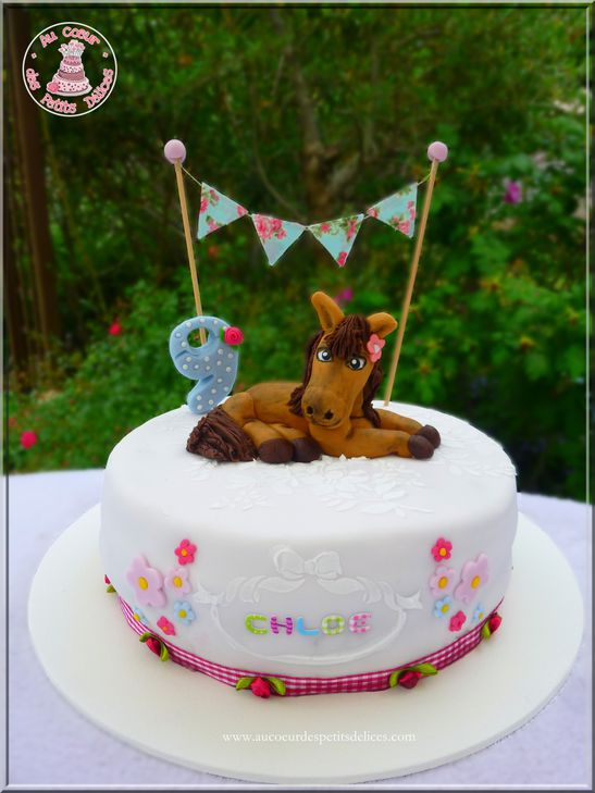 Extrêmement Gâteau poney shabby - ME62