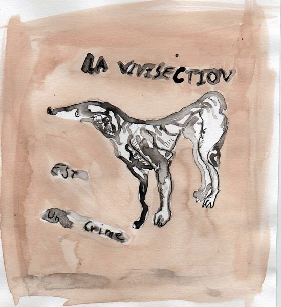 vivisection-crime