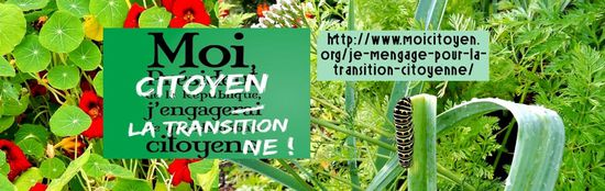 Transition-citoyenne-web1.jpg