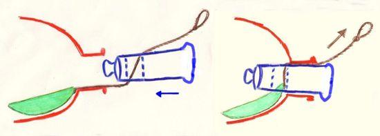06---Copie-copie-1.jpg