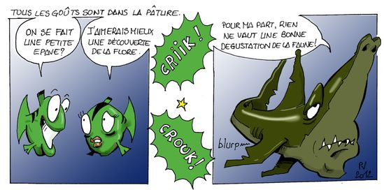 Requin-theme-balade-copie.jpg