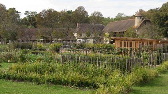 le-potager-jardin-de-l-abbaye-de-Royaumont 1075