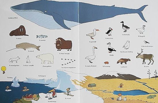 Le-grand-imagier-des-animaux-du-monde-2.JPG