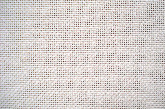 Etamine blanche DSC07960