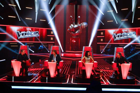 jury-the-voice-TF1.jpg