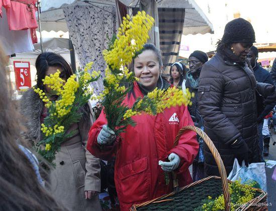 Fete-du-Mimosa---Marche-de-Cergy---07-c-gerardphotos-fre.jpg