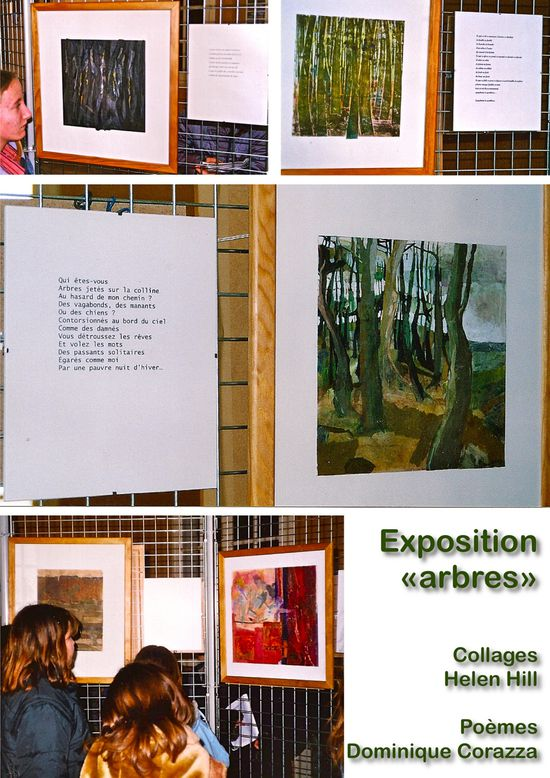 expo-arbres-Hill-Corazza-2004
