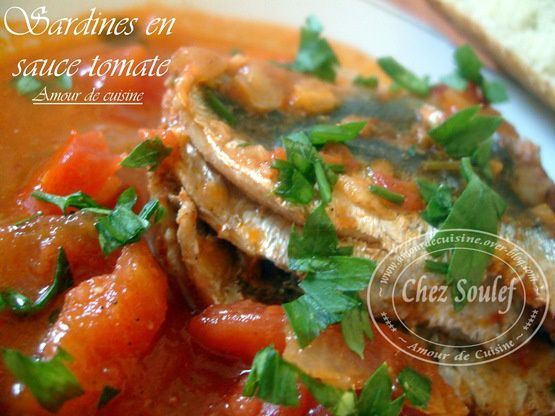 sardine en sauce tomate 032