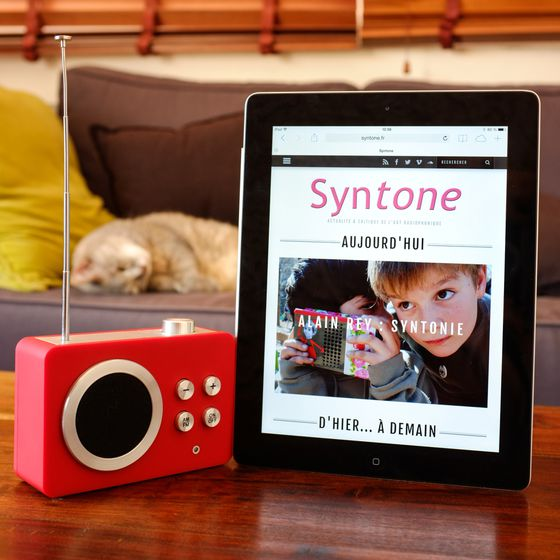Syntone Cat Square