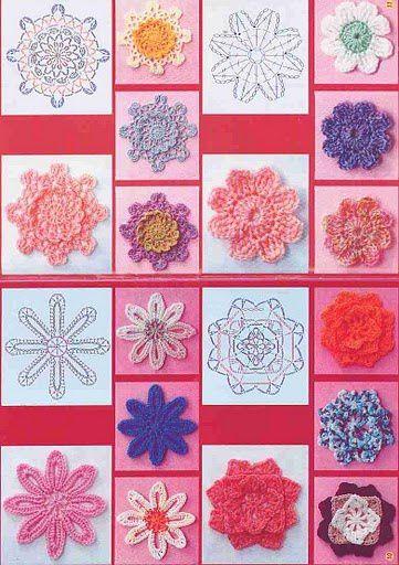 fleurs picasa sis
