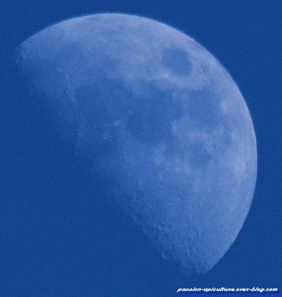 La lune (1)