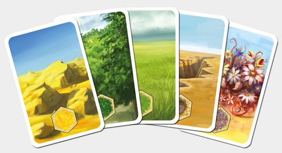 Kingdom-Builder-Cartes-Land.jpg