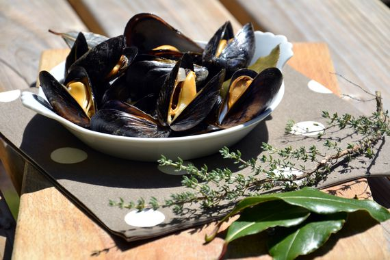 Moules-marinieres1.JPG