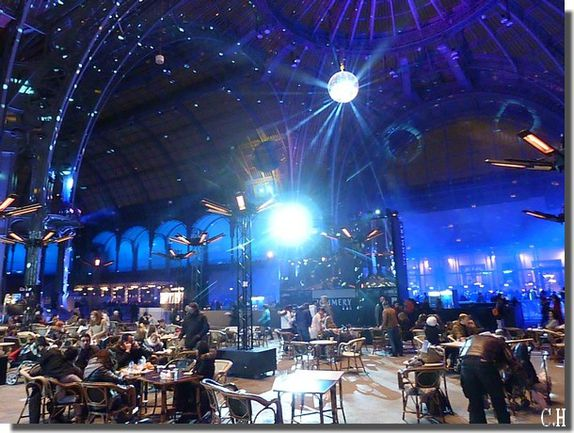 Paris Grand Palais 2012-2013 bar