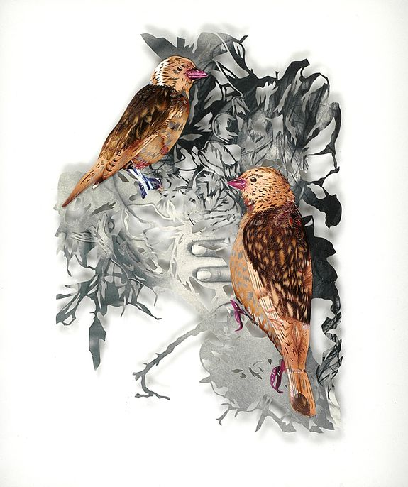 12_tom-gallant-linnets-2006-paper-cuts-glass--wood-34-x-275.jpg