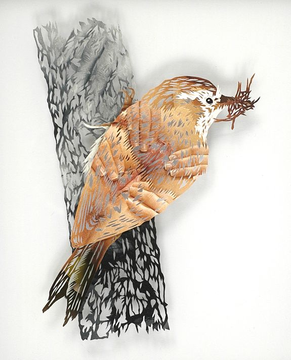 12_tom-gallant-treecreeper-2006-paper-cuts-glass--wood-245-.jpg