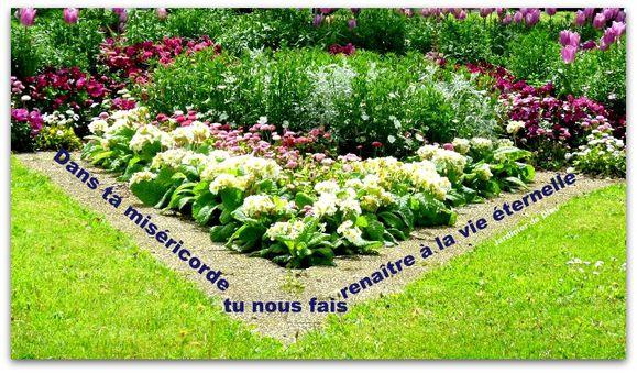 jardin en coeur