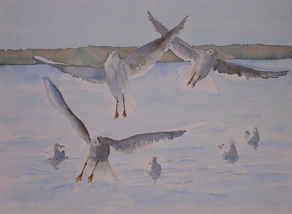 55-portrait oiseau-1