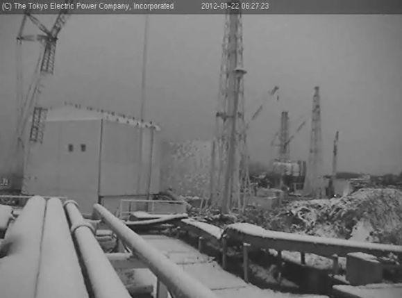 neigefukushima
