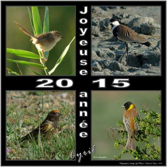 JoyeuseAnnee2015-Cyril