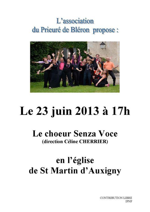 Affiche Senza voce 2013.doc-page-001