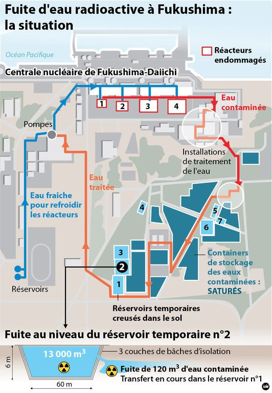 infographie-fukushima-eau-contaminee-10893847nniey