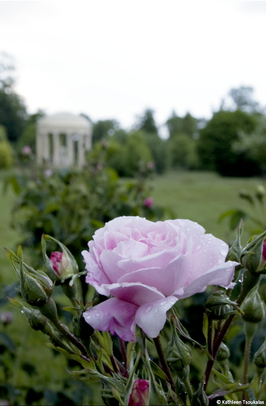 Petit Trianon by bukephalas